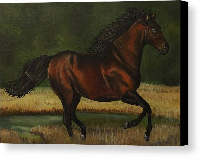 Horse Canvas Print featuring the painting Dark Horse by Lucy Deane