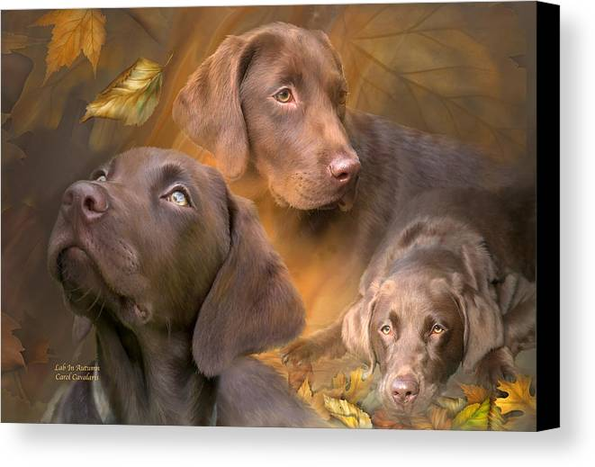Labrador Retriever Canvas Print featuring the mixed media Lab In Autumn by Carol Cavalaris