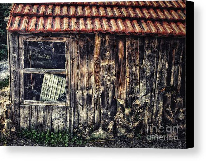 Photo Canvas Print featuring the photograph Wayside by Jutta Maria Pusl