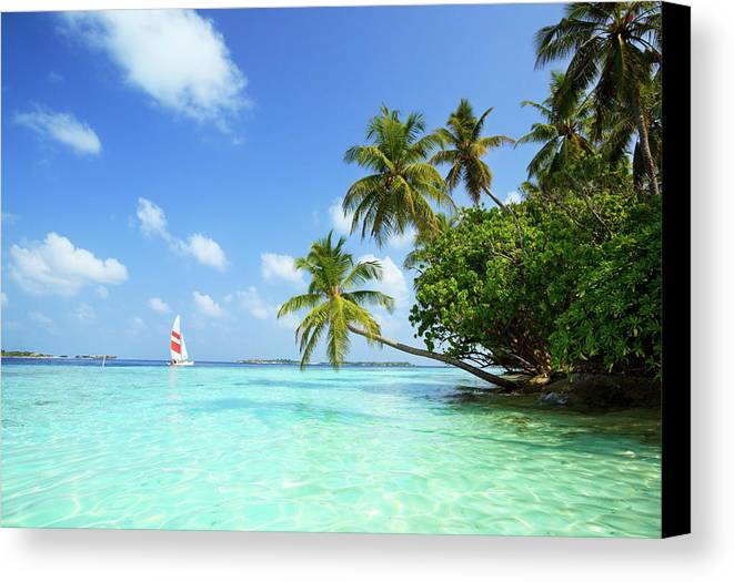 Horizontal Canvas Print featuring the photograph Sail Boat, Indian Ocean by Matteo Colombo