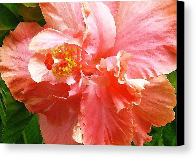 Hibiscus Canvas Print featuring the digital art Bright Pink Hibiscus by James Temple