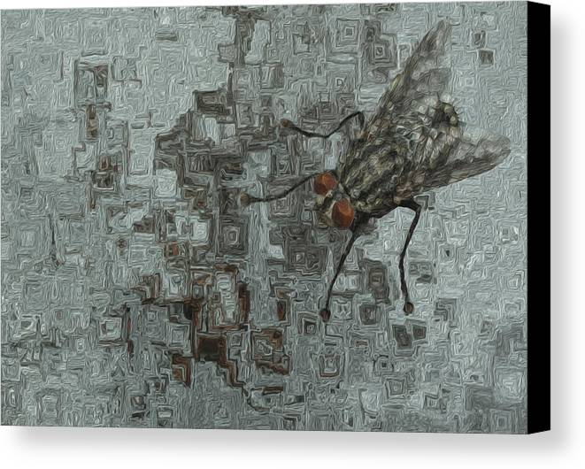Abstract Canvas Print featuring the painting Fly On The Wall by Jack Zulli