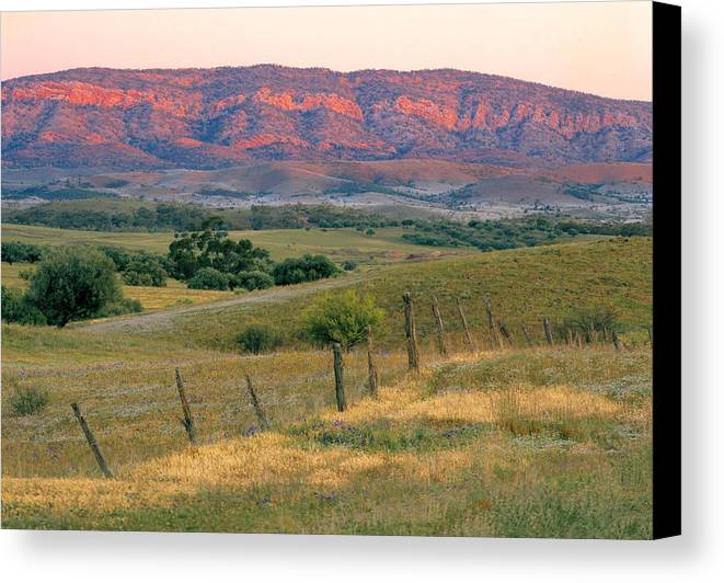 Horizontal Canvas Print featuring the photograph Sunset Glow On Flinders Ranges In Moralana Drive, South Australia by Peter Walton Photography