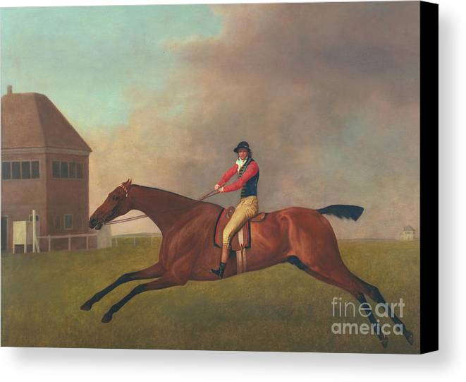 Horse Canvas Print featuring the painting Baronet With Sam Chifney Up by George Stubbs
