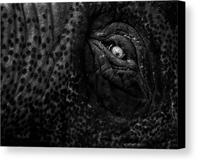 Elephant Canvas Print featuring the photograph Eye Of The Elephant by Bob Orsillo