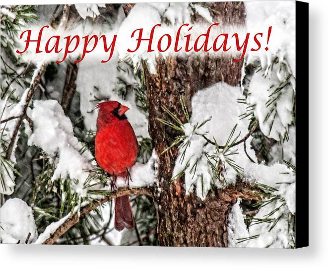 Image result for cardinal happy holidays images