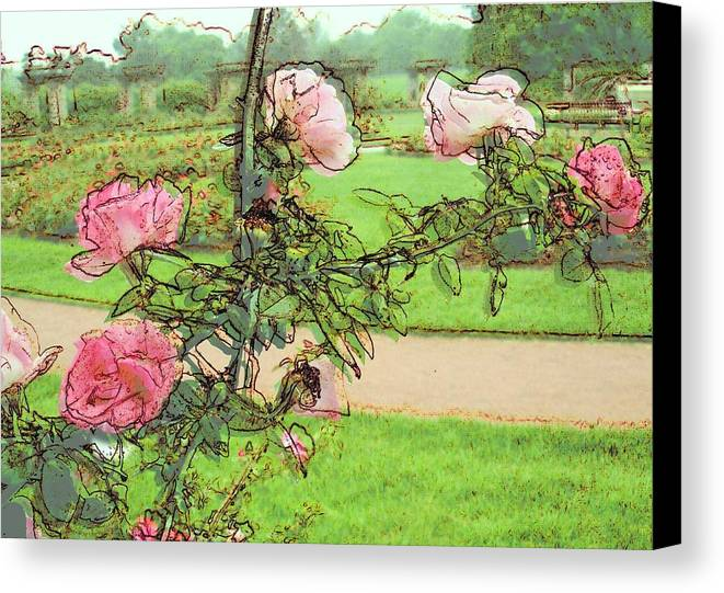 Loose Park Kcmo Canvas Print featuring the digital art Looking Through The Rose Vine by Stephanie Hollingsworth