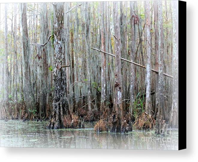 Louisiana Canvas Print featuring the photograph Magical Bayou by Carol Groenen