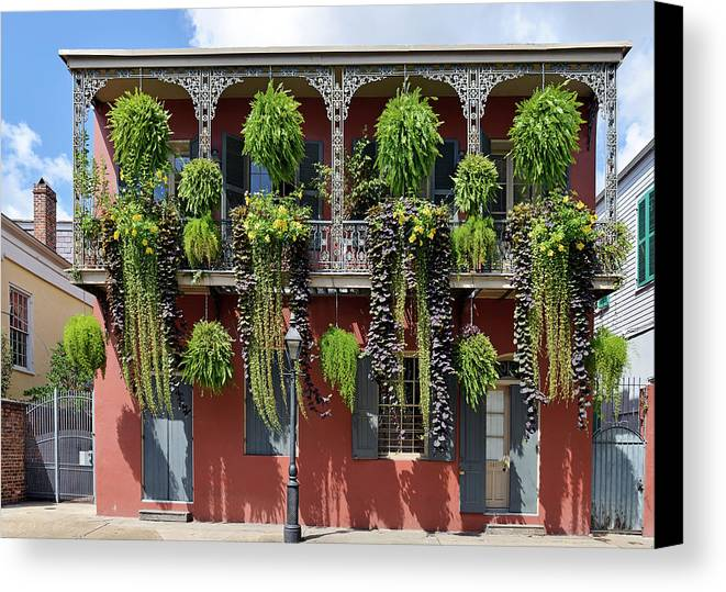 Balcony Canvas Print featuring the photograph New Orleans City Jungle by Christine Till