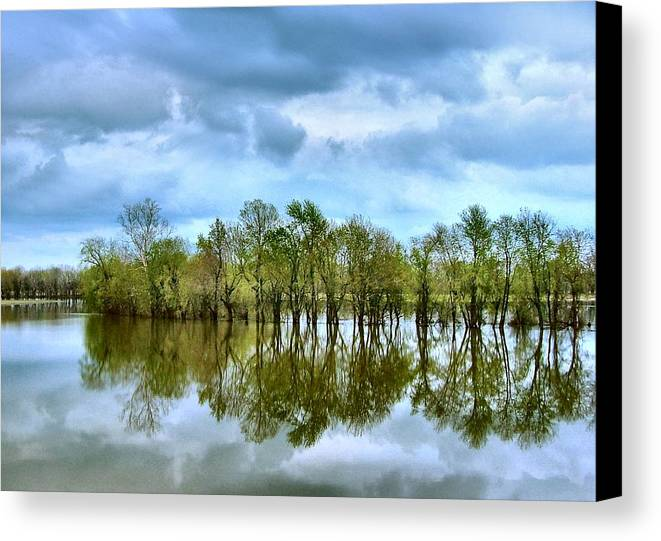 Spring Canvas Print featuring the photograph Reflections Of Spring by Julie Dant