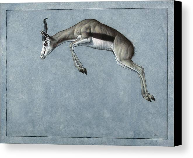 Springbok Canvas Print featuring the painting Springbok by James W Johnson