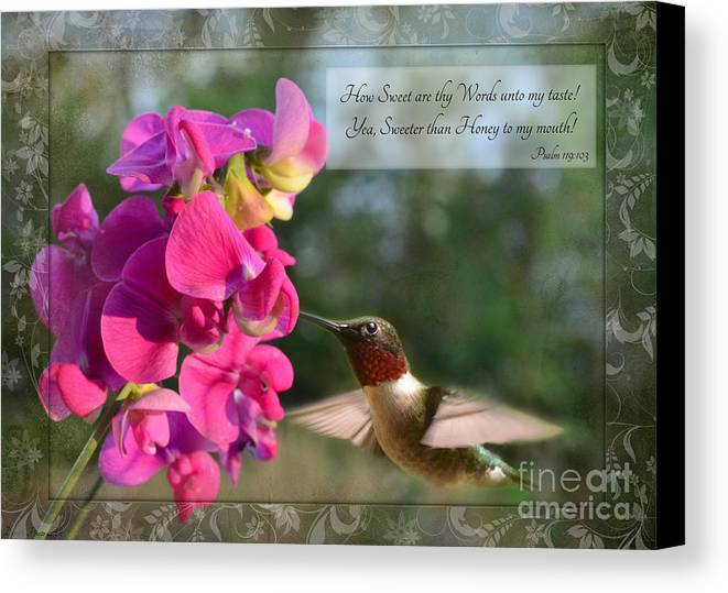 Nature Canvas Print featuring the photograph Sweet Pea Hummingbird Iv With Verse by Debbie Portwood