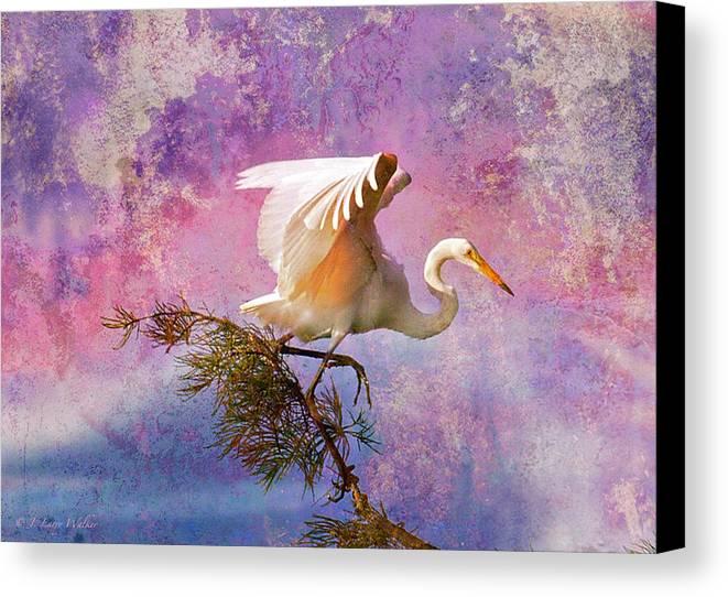 J Larry Walker Canvas Print featuring the digital art White Lake Swamp Egret by J Larry Walker