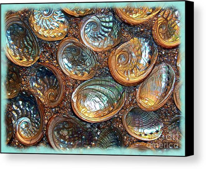 Abalones Canvas Print featuring the photograph Abalones by Judi Bagwell