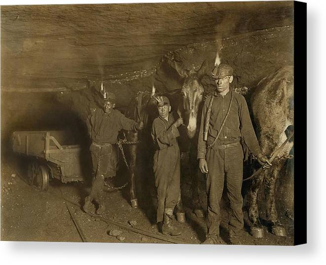 History Canvas Print featuring the photograph Drivers And Mules With Young Laborers by Everett