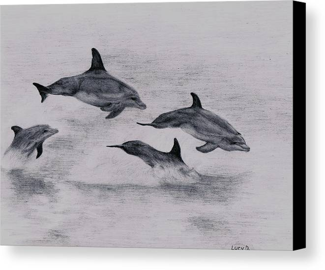 Dolphin Canvas Print featuring the drawing Dolphins by Lucy D