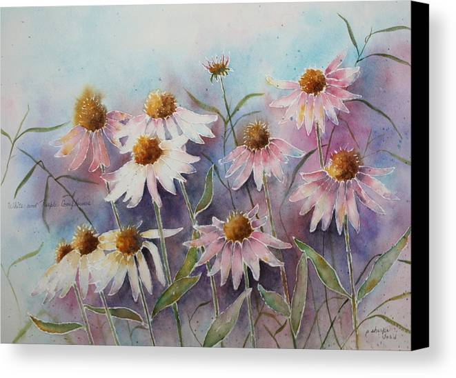 Floral Canvas Print featuring the painting White And Pink Coneflowers by Patsy Sharpe