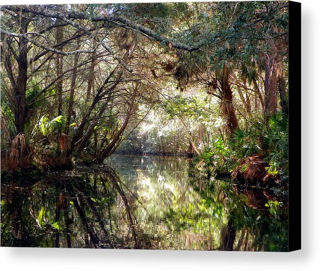Pepper Creek Canvas Print featuring the photograph Pepper Creek by Sheri McLeroy
