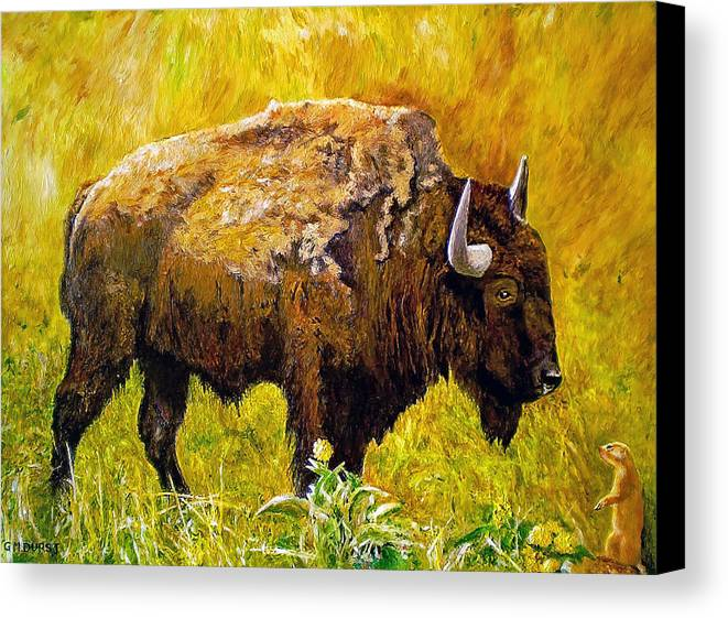 Buffalo Canvas Print featuring the painting Prairie Companions by Michael Durst