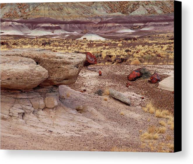 Jim Canvas Print featuring the photograph Purple Earth by James Peterson