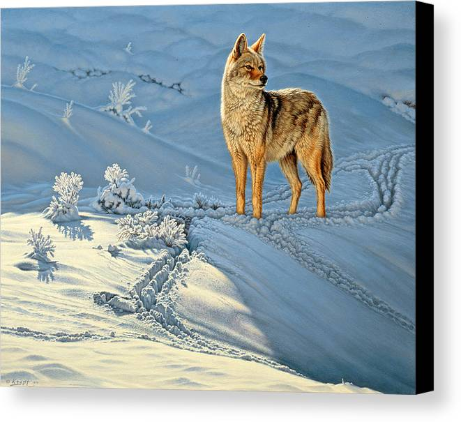 Wildlife Canvas Print featuring the painting the Coyote - God's Dog by Paul Krapf