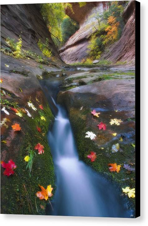 Oak Creek Canyon Canvas Print featuring the photograph Cut Into Autumn by Peter Coskun
