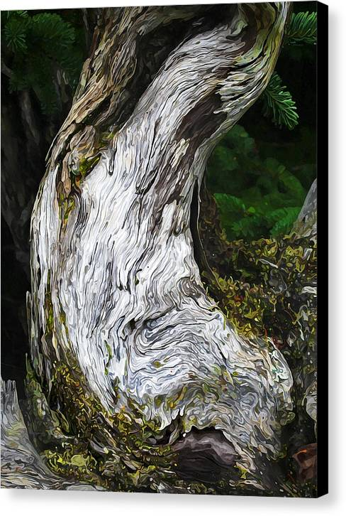 Nature Canvas Print featuring the photograph Cycle Of Life by Bill Caldwell -    ABeautifulSky Photography