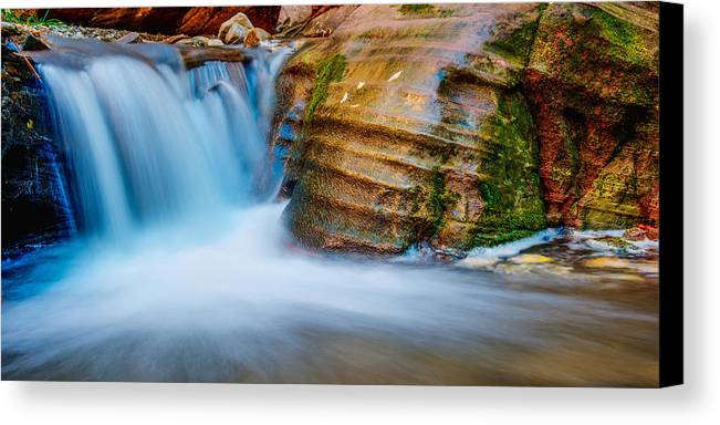 Slot Canvas Print featuring the photograph Desert Oasis by Chad Dutson
