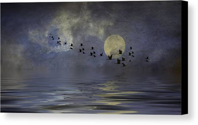 Heavens Gate Canvas Print featuring the photograph Heavens Gate by Diane Schuster
