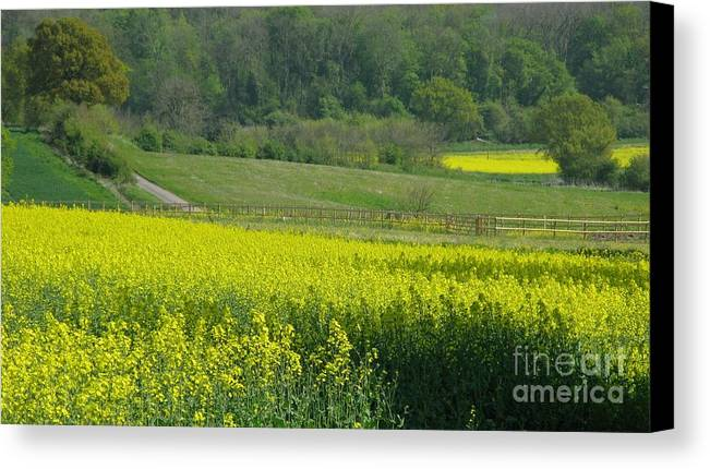 England Canvas Print featuring the photograph English Countryside by Ann Horn