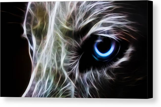 Wolf Canvas Print featuring the drawing One Eye by Aged Pixel