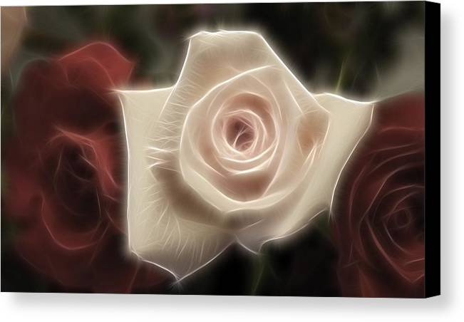 Red Canvas Print featuring the photograph 3 Little Roses For Patrice by Kevin Sherf