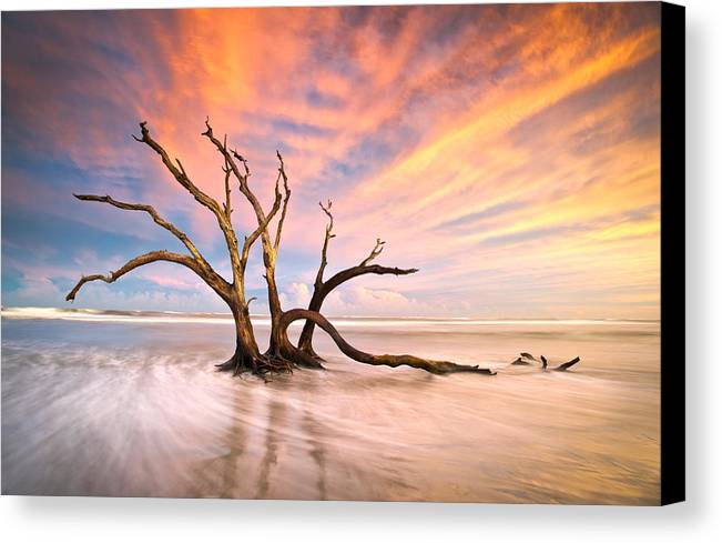Charleston Canvas Print featuring the photograph Charleston Sc Sunset Folly Beach Trees - The Calm by Dave Allen