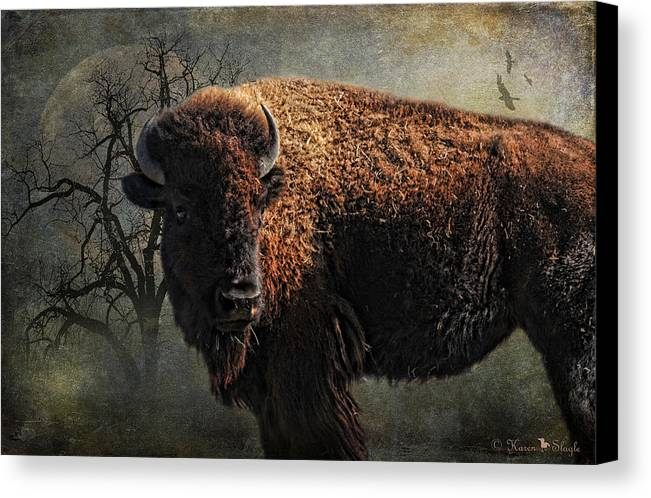 Buffalo Canvas Print featuring the photograph Buffalo Moon by Karen Slagle