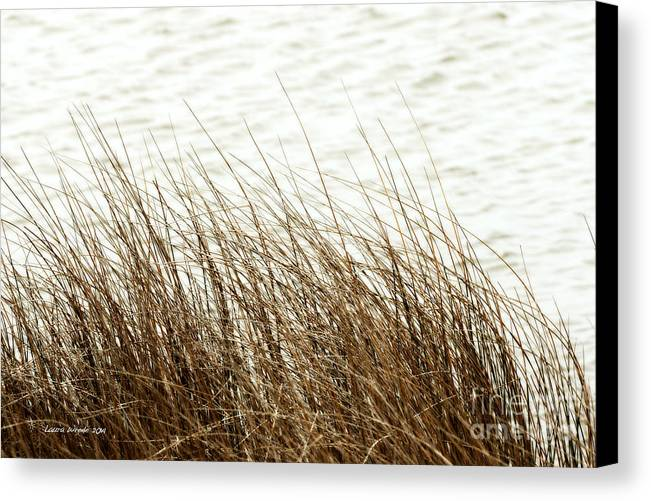 Shore Of Virginia Beach Canvas Print featuring the photograph Grass Down By The Shore Of Virginia Beach by Artist and Photographer Laura Wrede