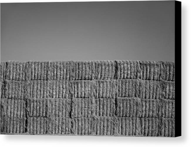 Black & White Canvas Print featuring the photograph Hay by Peter Tellone