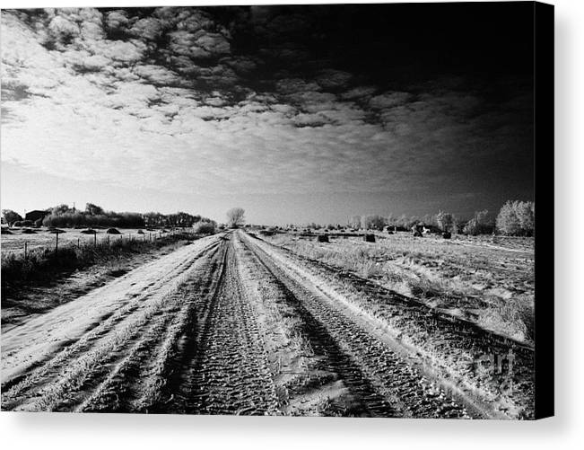 Small Canvas Print featuring the photograph snow covered untreated rural small road in Forget Saskatchewan Canada by Joe Fox