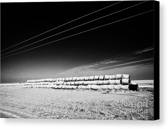 Stack Canvas Print featuring the photograph stack of frozen snow covered hay bales in a field Forget Saskatchewan Canada by Joe Fox