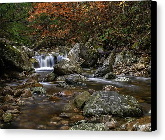 Roaring Brook Canvas Print featuring the photograph Roaring Brook - Sunderland Vermont Autumn Scene by Thomas Schoeller