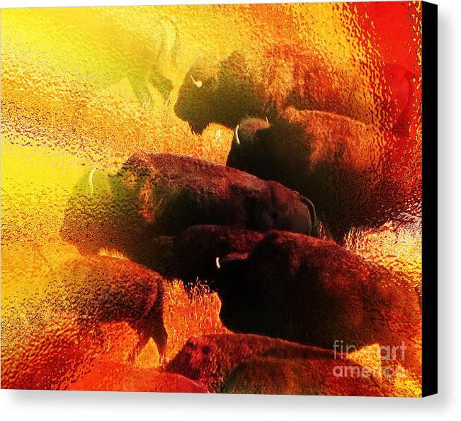 Abstract Canvas Print featuring the photograph Buffalo Sun by Terril Heilman