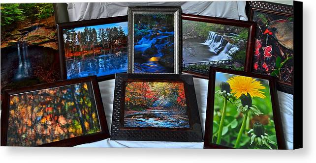 Collector Canvas Print featuring the photograph The Art Collector by Frozen in Time Fine Art Photography