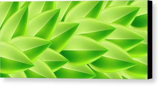 Horizontal Canvas Print featuring the digital art Green Feathers, Full Frame by Ralf Hiemisch