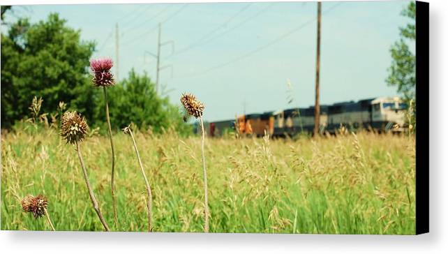 Photo Canvas Print featuring the photograph Thistle Rail by Jame Hayes