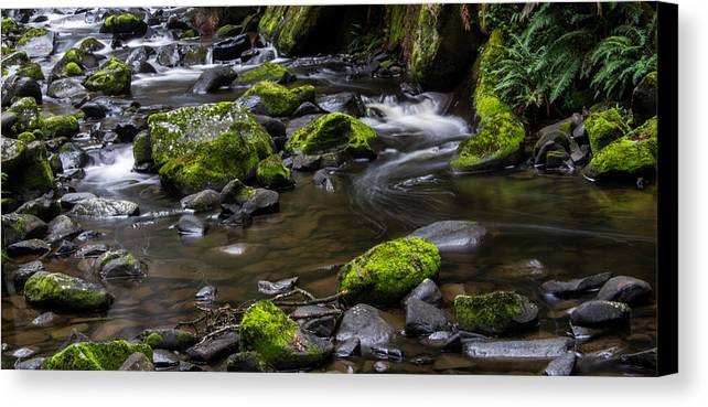 Stream Canvas Print featuring the photograph Rocky Stream 03 by Heather Provan