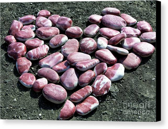Aphrodite's Heart Canvas Print featuring the photograph Aphrodite's Heart by John Rizzuto