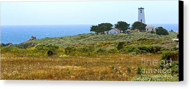 Piedras Blancas Lighthouse Canvas Print featuring the photograph Piedras Blancas Lighthouse Near San Simeon And Cambria Along Hwy 1 In California by Artist and Photographer Laura Wrede