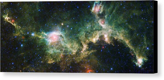 3scape Photos Canvas Print featuring the photograph Seagull Nebula by Adam Romanowicz