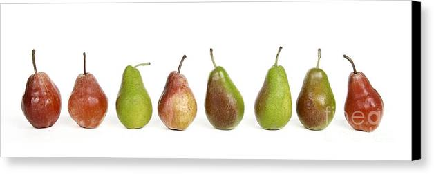 Food And Drink Canvas Print featuring the photograph Pears by Bernard Jaubert