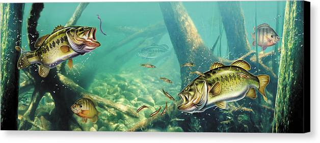 Jon Q Wright Canvas Print featuring the painting Bass Lake by JQ Licensing