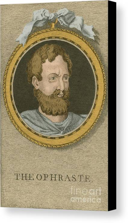 Philosophy Canvas Print featuring the photograph Theophrastus, Ancient Greek Polymath by Science Source